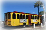 Trolley Photos - St Petes Trolley by Amanda Vouglas