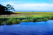 Thomas R. Fletcher Digital Art Prints - St Simons Island Print by Thomas R Fletcher