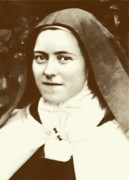 Flower Pyrography Prints - St. Therese of Lisieux - The Little Flower Print by Christi Studio