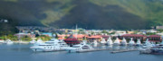Tilt Shift Framed Prints - St. Thomas US Virgin Islands Framed Print by Shelley Neff