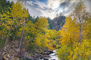 Lyons Prints - St Vrain Canyon Autumn Colorado View Print by James Bo Insogna