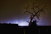 Lightning Bolt Pictures Prints - St Vrain Tree Lightning Storm  Print by James Bo Insogna