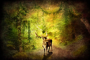 Nature Scene Mixed Media Metal Prints - Stag Metal Print by Svetlana Sewell