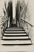 Harpers Ferry Posters - Stairs at Harpers Ferry Poster by Bill Cannon