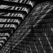 Monotone Prints - Stairs Print by David Patterson
