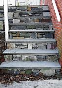 Stairs To The Plague House Print by RC DeWinter