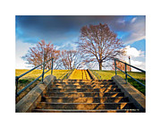 Brian Wallace Art - Stairway To Federal Hill by Brian Wallace