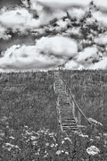 Stairway To Heaven Prints - Stairway To Heaven BW Print by Tom Singleton