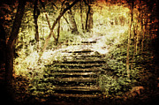 Pathway Digital Art - Stairway to Heaven by Julie Hamilton