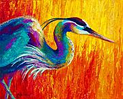 Vivid Painting Prints - Stalking The Marsh - Great Blue Heron Print by Marion Rose