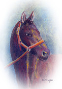 Thoroughbred Pastels Framed Prints - Stallion Framed Print by Arline Wagner
