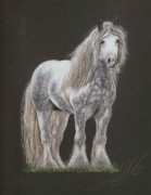 Horse Pastels Originals - Stallion Dunbroody by Terry Kirkland Cook