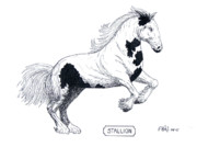 Birds And Animals - Paintings And Drawings - Stallion by Frederic Kohli