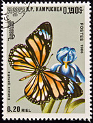 Danaus Genutia Prints - Stamp. Butterfly on flower. Print by Fernando Barozza