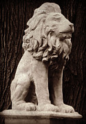 Gargoyle Lion Prints - Standing Guard Print by Brenda Conrad