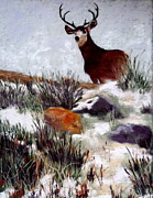 Mule Deer Pastels Posters - Standing Guard Poster by Nancy Jolley