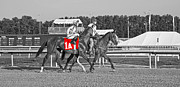 Jockey Silks Framed Prints - Standing Out Framed Print by East Coast Barrier Islands Betsy A Cutler
