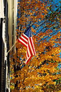 Concord Massachusetts Art - Standing Proud by Joann Vitali
