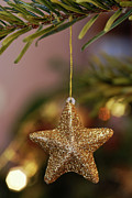 Christmas Star Posters - Star and Garland on Christmas tree Poster by Sami Sarkis