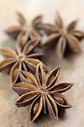 Anise Photos - Star Anise  by Neil Overy