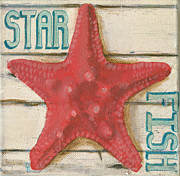 Debbie Brown Prints - Star Fish Print by Debbie Brown