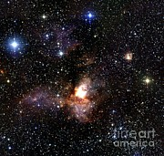Stellar Evolution Photos - Star Formation Region by 2MASS project / NASA