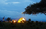 Star Gazing Photos - Star Gazing Camp by Kantilal Patel