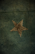 Brown Prints Prints - Star Print by Larysa Luciw