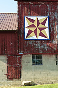 Quilt Barn Prints - Star Shadow Print by Betty Eich