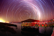 Stars Trail Posters - Star Trails Poster by Dr Fred Espenak