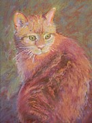 Orange Cat Pastels Posters - Starbright Poster by Gina Ward