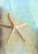 Sea Shell Digital Art Metal Prints - Starfish Metal Print by Betty LaRue