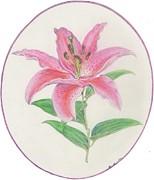 Stargazer Lily Print by Joanna Aud