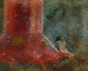 Cindy Wright Prints - Stargazing Hummer Print by Cindy Wright