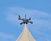 Bird On A Wind Vane Prints - Staring Southward Print by Al Powell Photography USA
