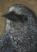 European Starling Metal Prints - Starling Study Metal Print by Robin Gorton