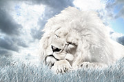 Lion Digital Art Metal Prints - Starry Dreamer Metal Print by Julie L Hoddinott