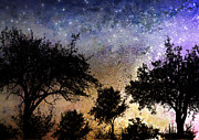 Silhouette Digital Art - Starry Night  by Ellen Lacey