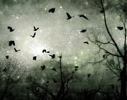 At Digital Art - Starry Night by Gothicolors With Crows