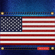 Badge Posters - Stars and Stripes denim Poster by Jane Rix