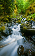 Creek Prints - Starvation Creek Falls Print by Mike  Dawson