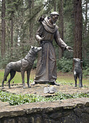 Francis Photo Prints - Statue of St. Francis of Assisi. Print by Gino Rigucci