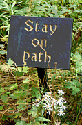 Green Gold Acrylic Prints - Stay on Path Acrylic Print by Suzanne Gaff
