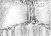 Tree Lines Drawings Prints - Stay Rooted Print by Crystal  June