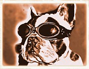 Critters Digital Art Prints - Steampunk Bulldog Print by Tisha McGee