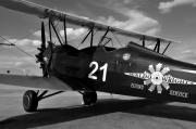 Stearman Prints - Stearman Biplane Print by David Lee Thompson