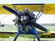 Stearman Prints - Stearman motor Print by Bobbie G