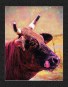 Steer Mixed Media Framed Prints - Steer Lick 1 Framed Print by John Breen