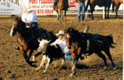 Animals Drawings - Steer Wrestling 101 by Cheryl Poland