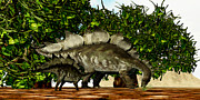 Stegosaurus Prints - Stegosaurus 03 Print by Corey Ford